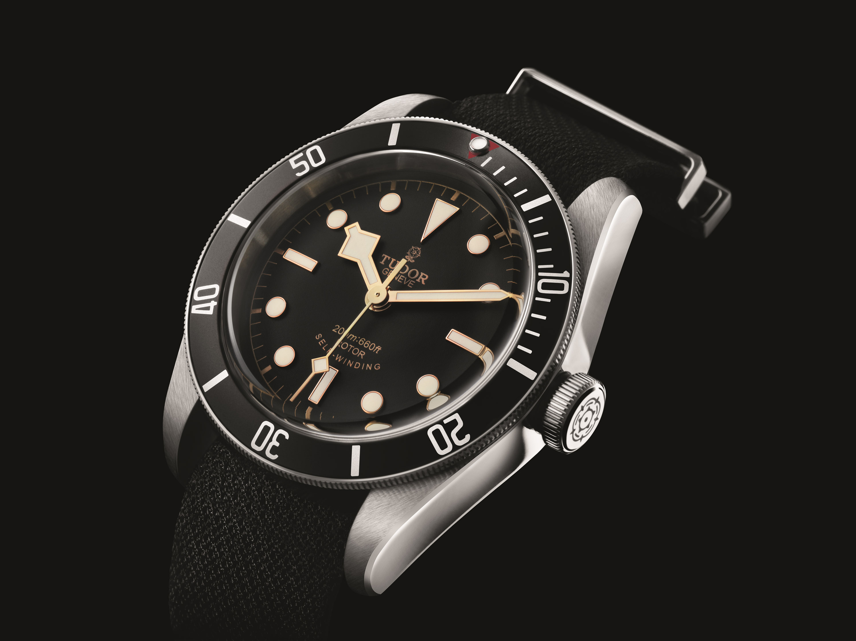 Uhren bis 5000 Euro - Tudor Black Bay Ref. 79220N